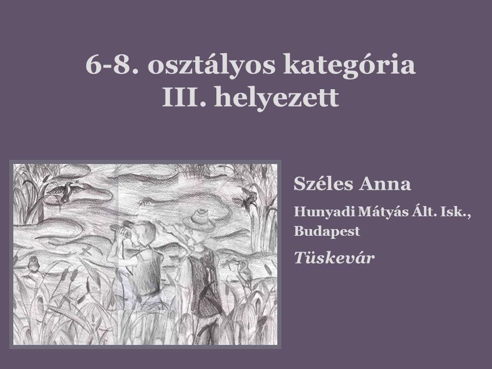 6-8. osztályos kategória III. helyezett Széles Anna Hunyadi Mátyás Ált. Isk., Budapest Tüskevár