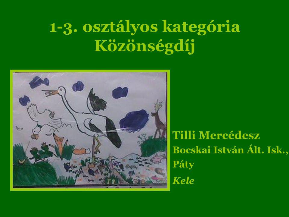 1-3. osztályos kategória Közönségdíj Tilli Mercédesz Bocskai István Ált. Isk., Páty Kele