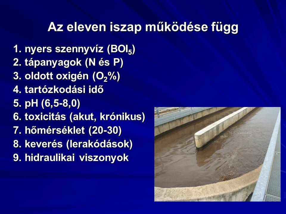 Az eleven iszap működése függ 1. nyers szennyvíz (BOI 5 ) 2. tápanyagok (N és P) 3. oldott oxigén (O 2 %) 4. tartózkodási idő 5. pH (6,5-8,0) 6. toxic
