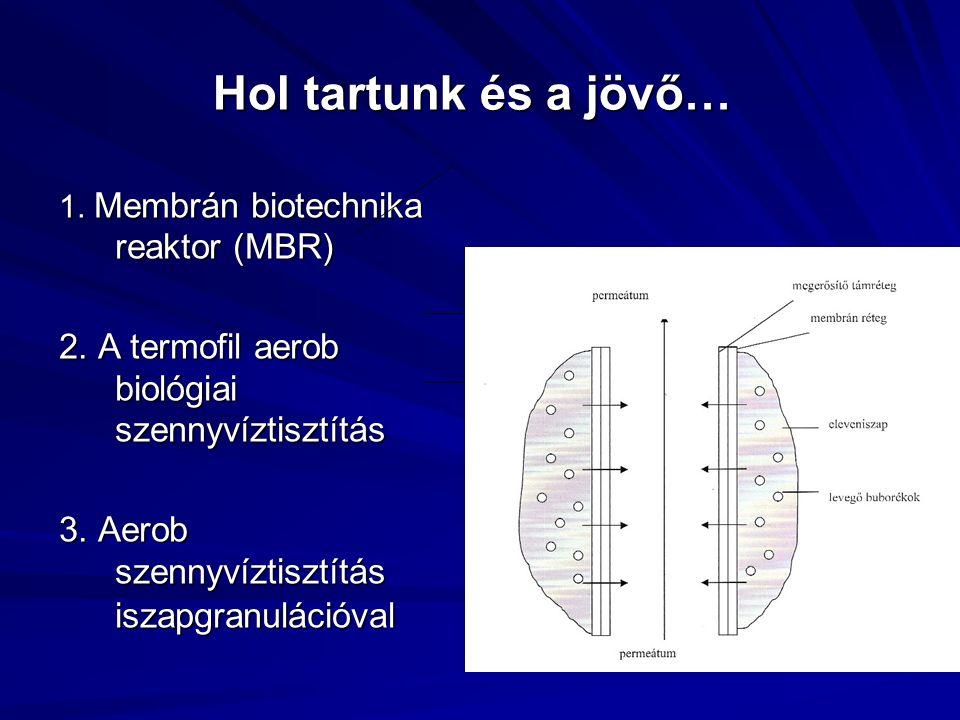 1. Membrán biotechnika reaktor (MBR) 2. A termofil aerob biológiai szennyvíztisztítás 3. Aerob szennyvíztisztítás iszapgranulációval Hol tartunk és a