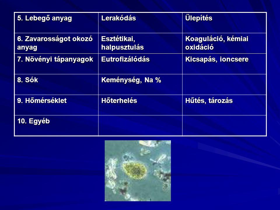 5. Lebegő anyag LerakódásÜlepítés 6. Zavarosságot okozó anyag Esztétikai, halpusztulás Koaguláció, kémiai oxidáció 7. Növényi tápanyagok Eutrofizálódá