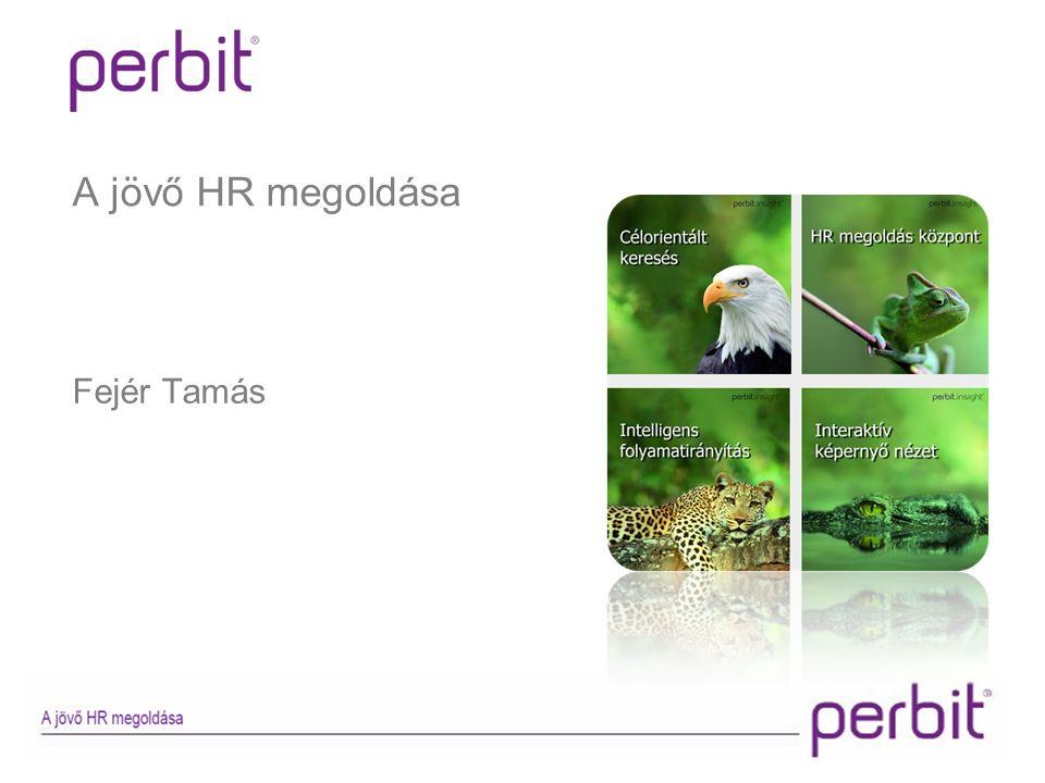 perbit.insight Munkavállaló kezelő Munkakör kezelő Toborzás kezelő Továbbképzés kezelő