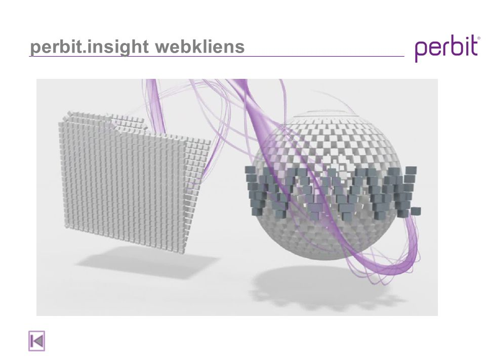 perbit.insight webkliens