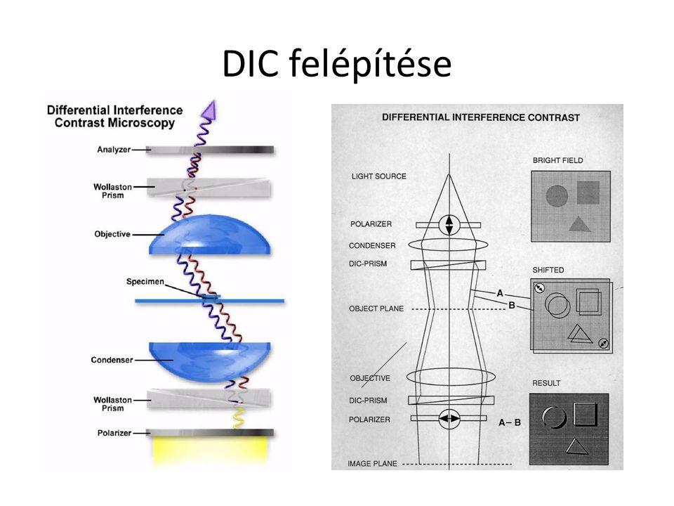DIC felépítése