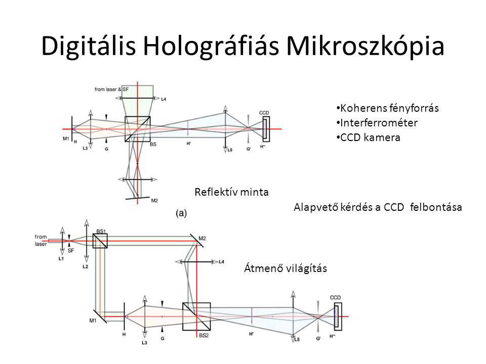 Digitális Holográfiás Mikroszkópia Reflektív minta Átmenő világítás Koherens fényforrás Interferrométer CCD kamera Alapvető kérdés a CCD felbontása