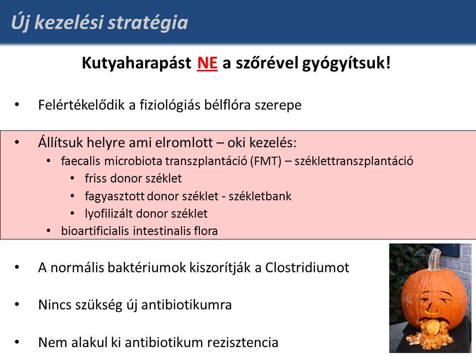Új kezelési stratégia Kutyaharapást NE a szőrével gyógyítsuk.