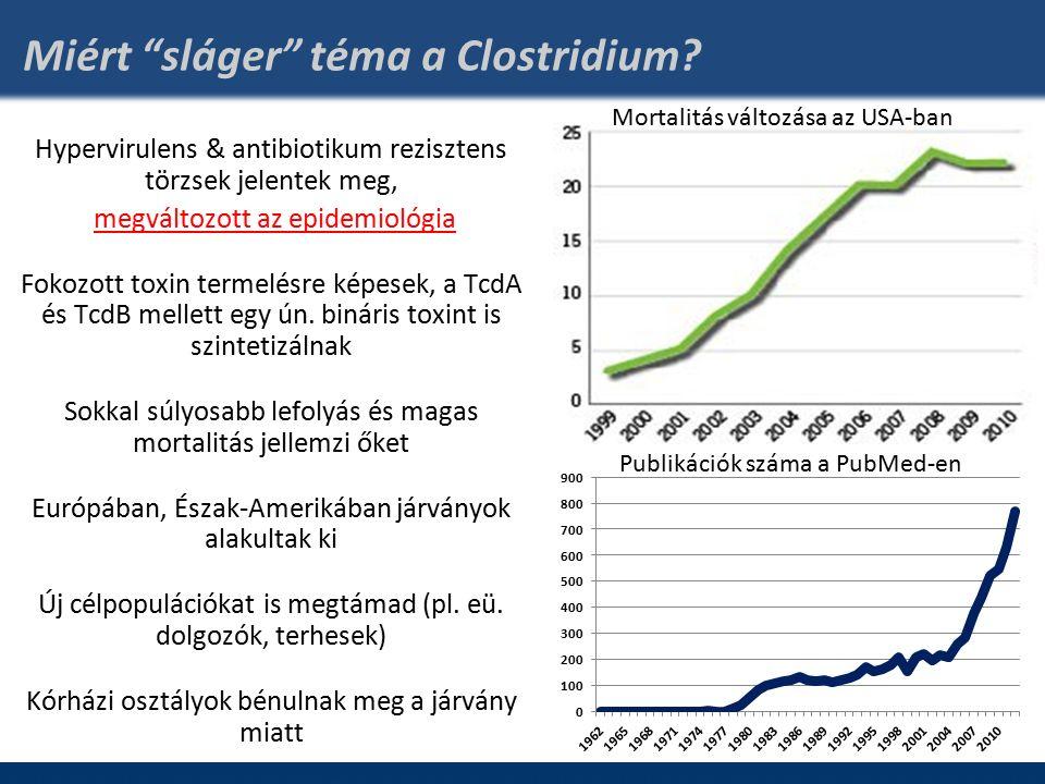 Miért sláger téma a Clostridium.