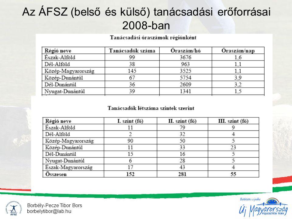 Borbély-Pecze Tibor Bors borbelytibor@lab.hu Az ÁFSZ (belső és külső) tanácsadási erőforrásai 2008-ban