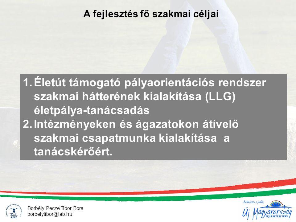 A fejlesztés fő szakmai céljai 1.Életút támogató pályaorientációs rendszer szakmai hátterének kialakítása (LLG) életpálya-tanácsadás 2.Intézményeken és ágazatokon átívelő szakmai csapatmunka kialakítása a tanácskérőért.