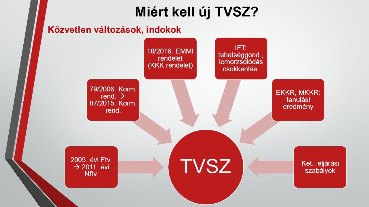 Miért kell új TVSZ. Közvetlen változások, indokok TVSZ 2005.