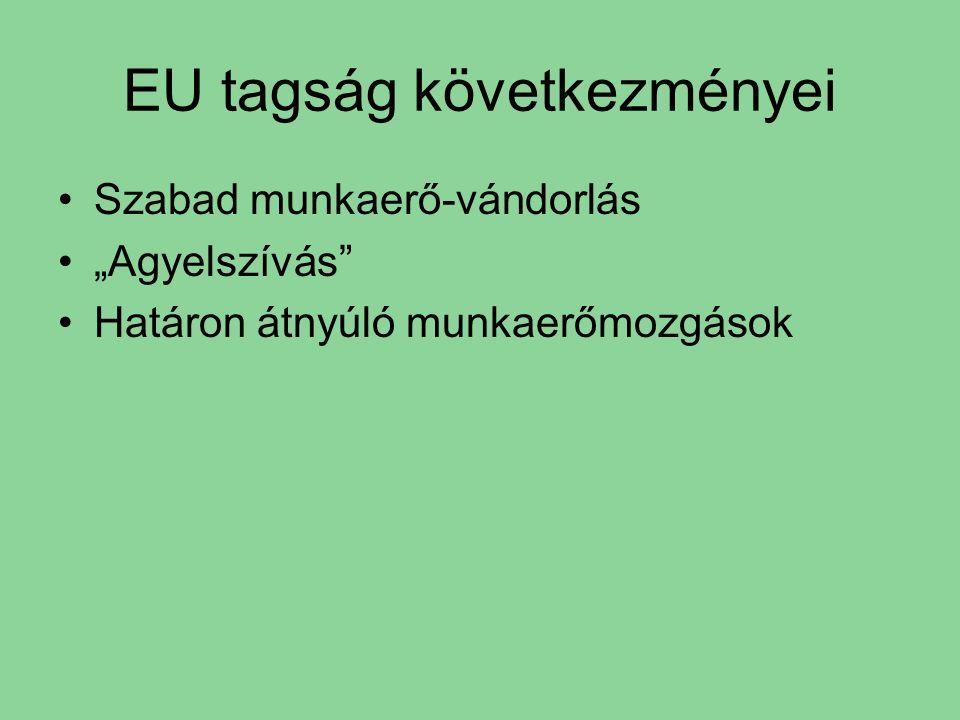 """EU tagság következményei Szabad munkaerő-vándorlás """"Agyelszívás Határon átnyúló munkaerőmozgások"""