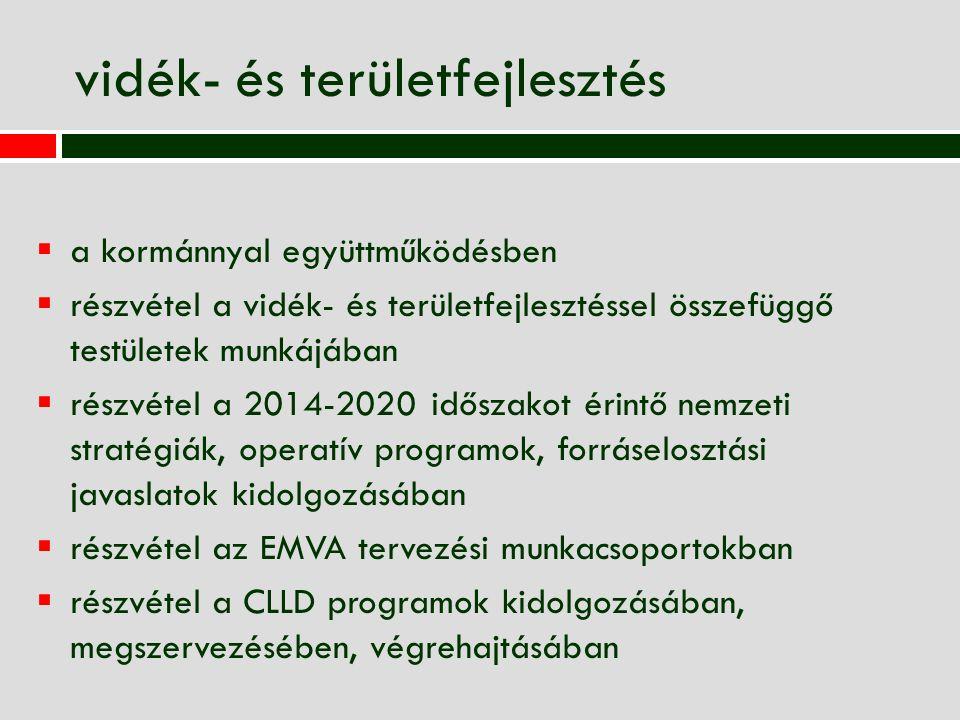 vidék- és területfejlesztés  a kormánnyal együttműködésben  részvétel a vidék- és területfejlesztéssel összefüggő testületek munkájában  részvétel a 2014-2020 időszakot érintő nemzeti stratégiák, operatív programok, forráselosztási javaslatok kidolgozásában  részvétel az EMVA tervezési munkacsoportokban  részvétel a CLLD programok kidolgozásában, megszervezésében, végrehajtásában