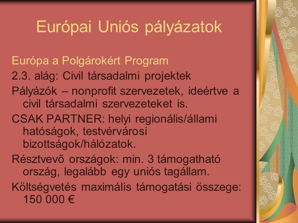 Európai Uniós pályázatok Európa a Polgárokért Program 2.3. alág: Civil társadalmi projektek Pályázók – nonprofit szervezetek, ideértve a civil társada