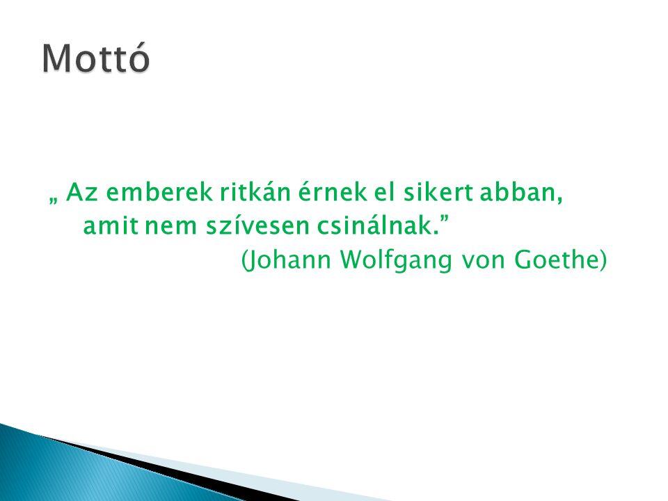 """"""" Az emberek ritkán érnek el sikert abban, amit nem szívesen csinálnak. (Johann Wolfgang von Goethe)"""