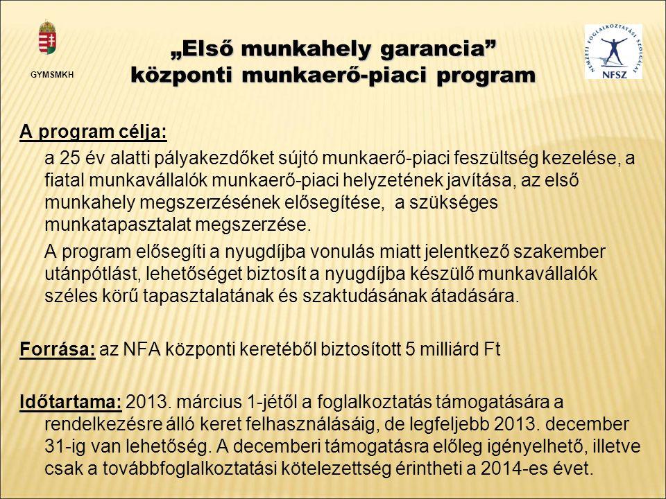 """""""Első munkahely garancia központi munkaerő-piaci program A program célja: a 25 év alatti pályakezdőket sújtó munkaerő-piaci feszültség kezelése, a fiatal munkavállalók munkaerő-piaci helyzetének javítása, az első munkahely megszerzésének elősegítése, a szükséges munkatapasztalat megszerzése."""