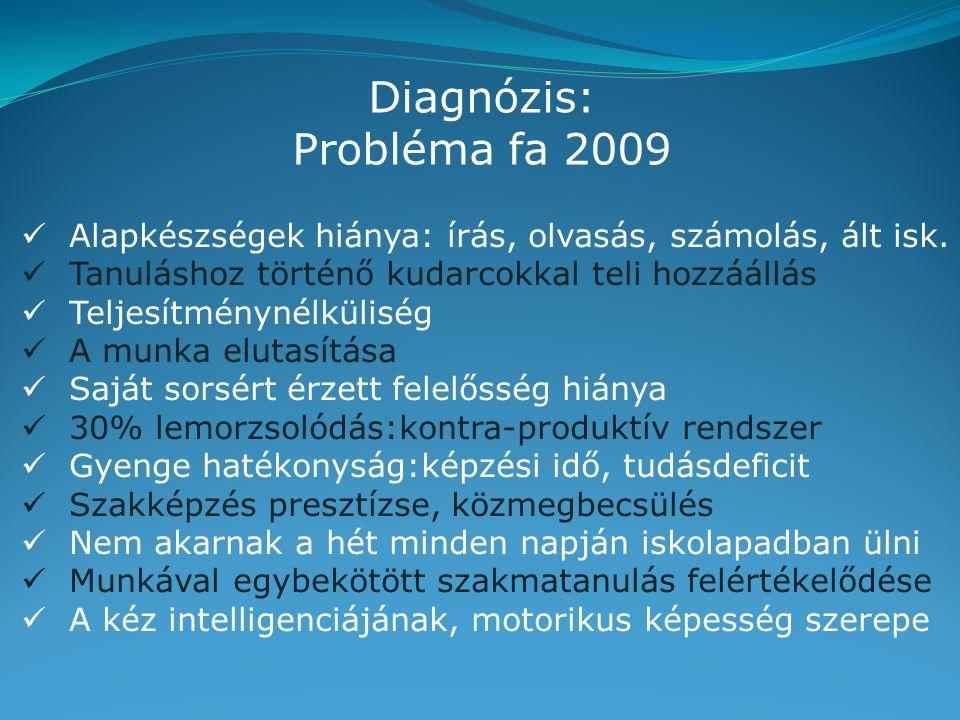 Diagnózis: Probléma fa 2009 Alapkészségek hiánya: írás, olvasás, számolás, ált isk.