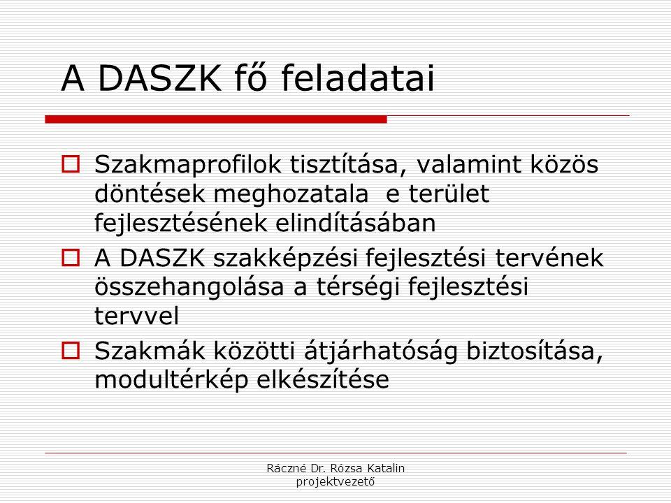 Ráczné Dr. Rózsa Katalin projektvezető A DASZK fő feladatai  Szakmaprofilok tisztítása, valamint közös döntések meghozatala e terület fejlesztésének
