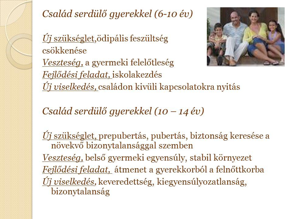 Család serdülő gyerekkel (6-10 év) Új szükséglet,ödipális feszültség csökkenése Veszteség, a gyermeki felelőtleség Fejlődési feladat, iskolakezdés Új viselkedés, családon kivüli kapcsolatokra nyitás Család serdülő gyerekkel (10 – 14 év) Új szükséglet, prepubertás, pubertás, biztonság keresése a növekvő bizonytalansággal szemben Veszteség, belső gyermeki egyensúly, stabil környezet Fejlődési feladat, átmenet a gyerekkorból a felnőttkorba Új viselkedés, keveredettség, kiegyensúlyozatlanság, bizonytalanság