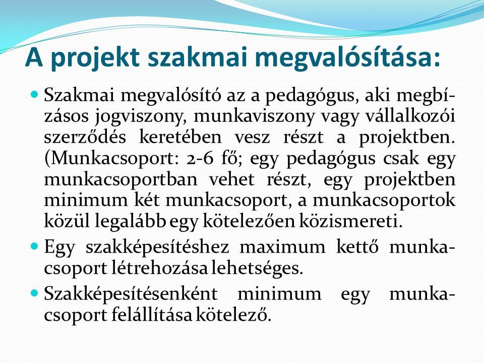A projekt szakmai megvalósítása: Szakmai megvalósító az a pedagógus, aki megbí- zásos jogviszony, munkaviszony vagy vállalkozói szerződés keretében vesz részt a projektben.