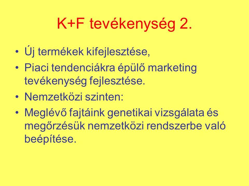 K+F tevékenység 2.