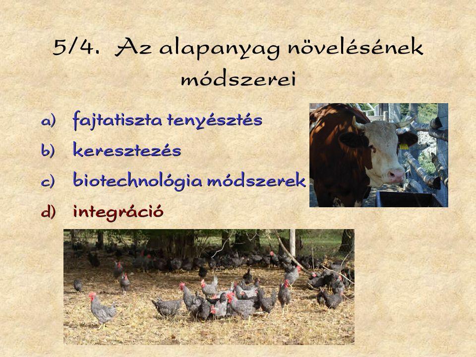 5/4. Az alapanyag növelésének módszerei  fajtatiszta tenyésztés  keresztezés  biotechnológia módszerek  integráció  fajtatiszta tenyésztés 