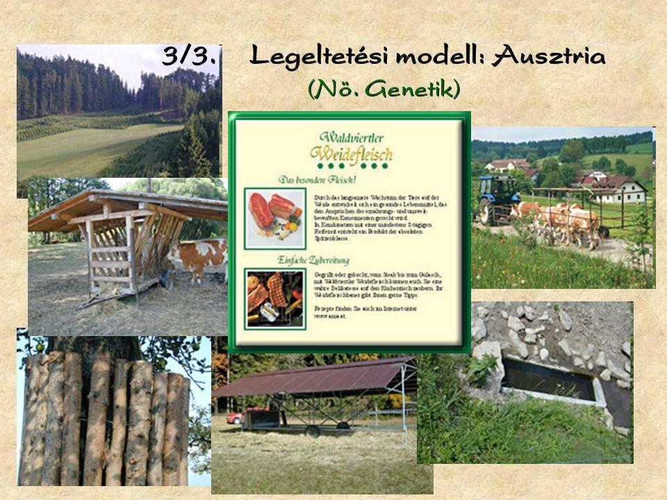 3/3. Legeltetési modell: Ausztria (Nö. Genetik)