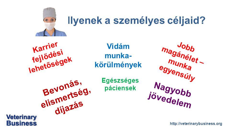 http://veterinarybusiness.org Ilyenek a személyes céljaid.