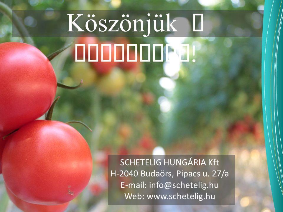 Köszönjük a figyelmet ! SCHETELIG HUNGÁRIA Kft H-2040 Budaörs, Pipacs u. 27/a E-mail: info@schetelig.hu Web: www.schetelig.hu