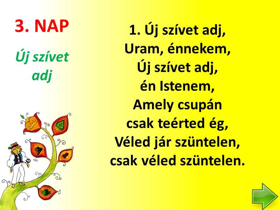 3. NAP 1.