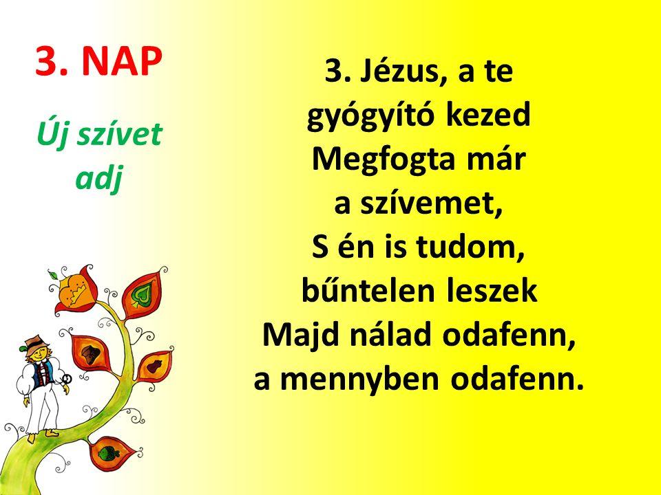 3. NAP 3.
