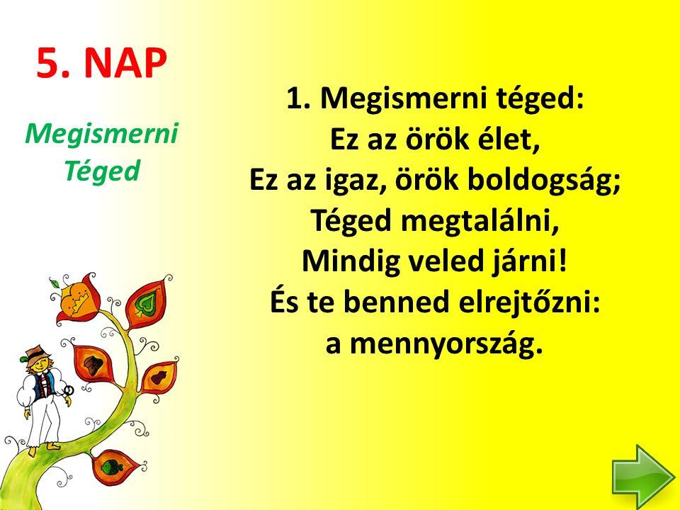 5. NAP 1.