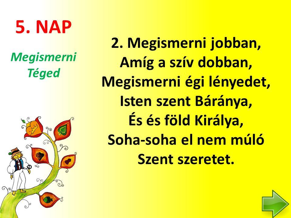 5. NAP 2.