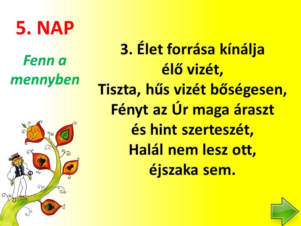 5. NAP 3.