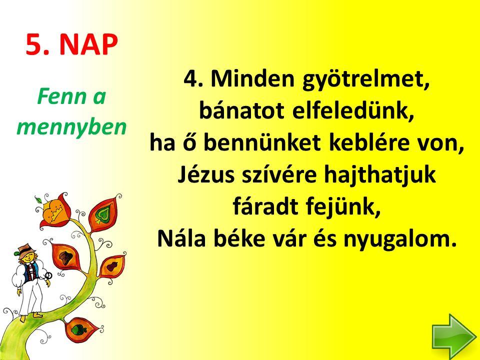 5. NAP 4.