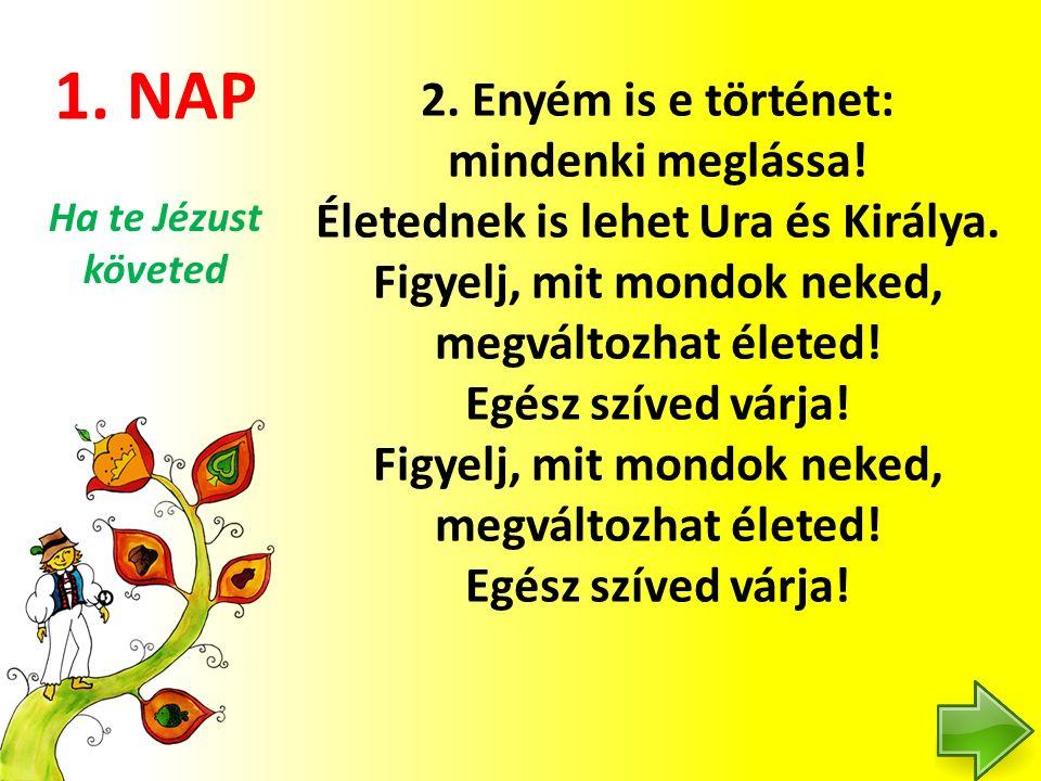 5.NAP 2.