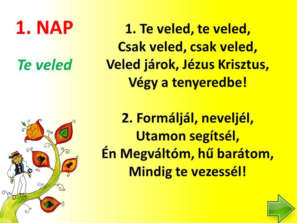 3.NAP 2.