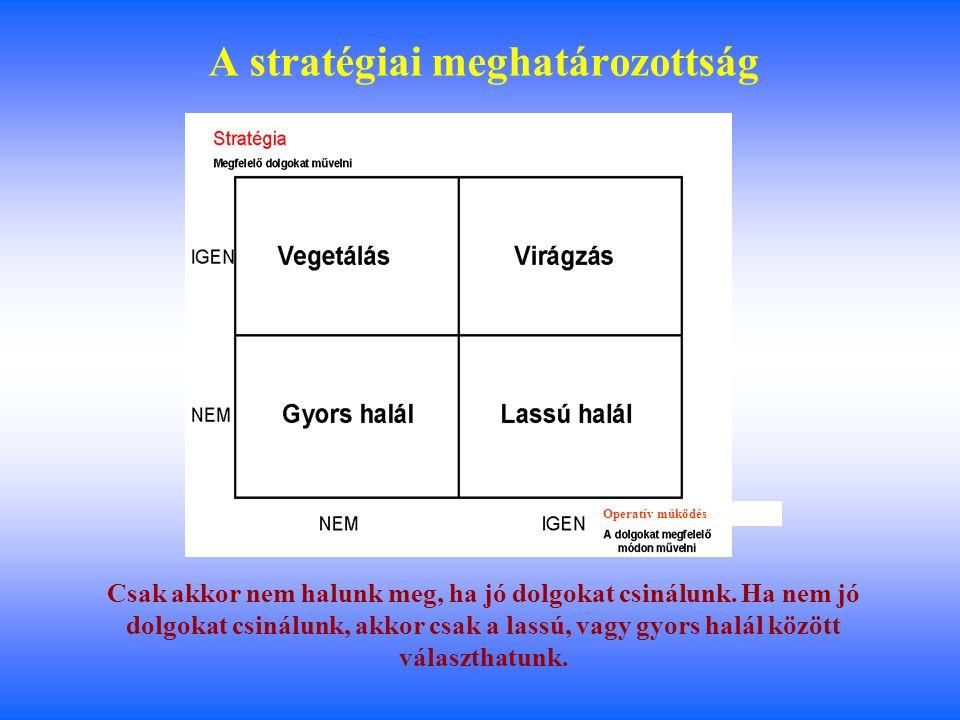 1 Boda György Budapest, 2008 máj. 9 A stratégia meghatározó szerepe