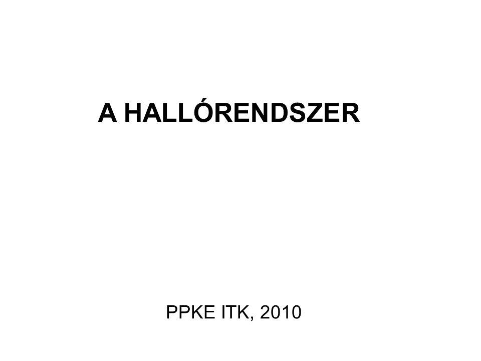 A HALLÓRENDSZER PPKE ITK, 2010