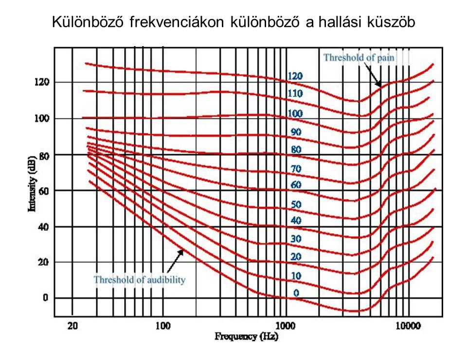 Különböző frekvenciákon különböző a hallási küszöb