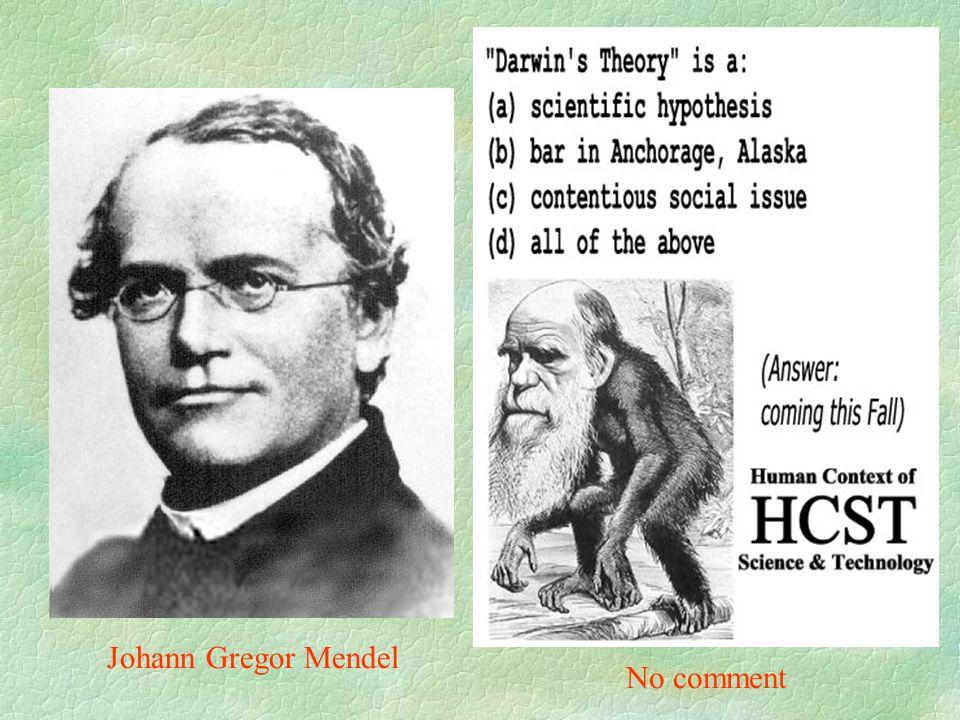 No comment Johann Gregor Mendel