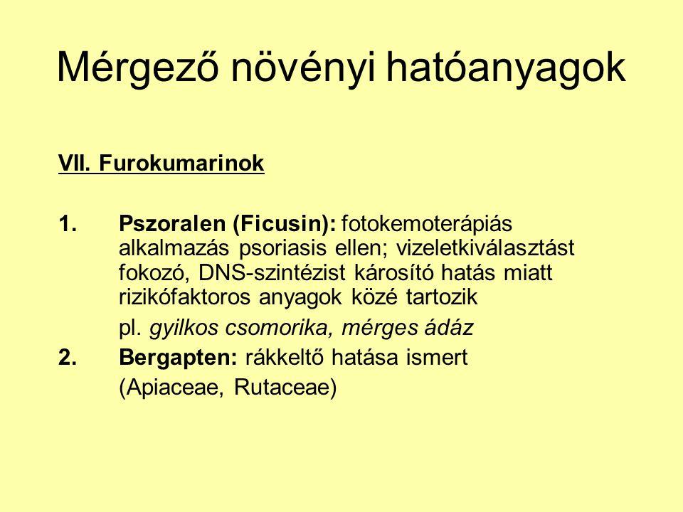 Mérgező növényi hatóanyagok VII. Furokumarinok 1.Pszoralen (Ficusin): fotokemoterápiás alkalmazás psoriasis ellen; vizeletkiválasztást fokozó, DNS-szi
