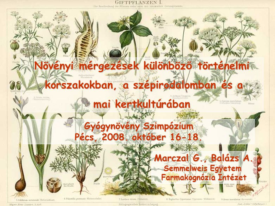 Növényi mérgezések különböz ő történelmi korszakokban, a szépirodalomban és a korszakokban, a szépirodalomban és a mai kertkultúrában Marczal G., Balá