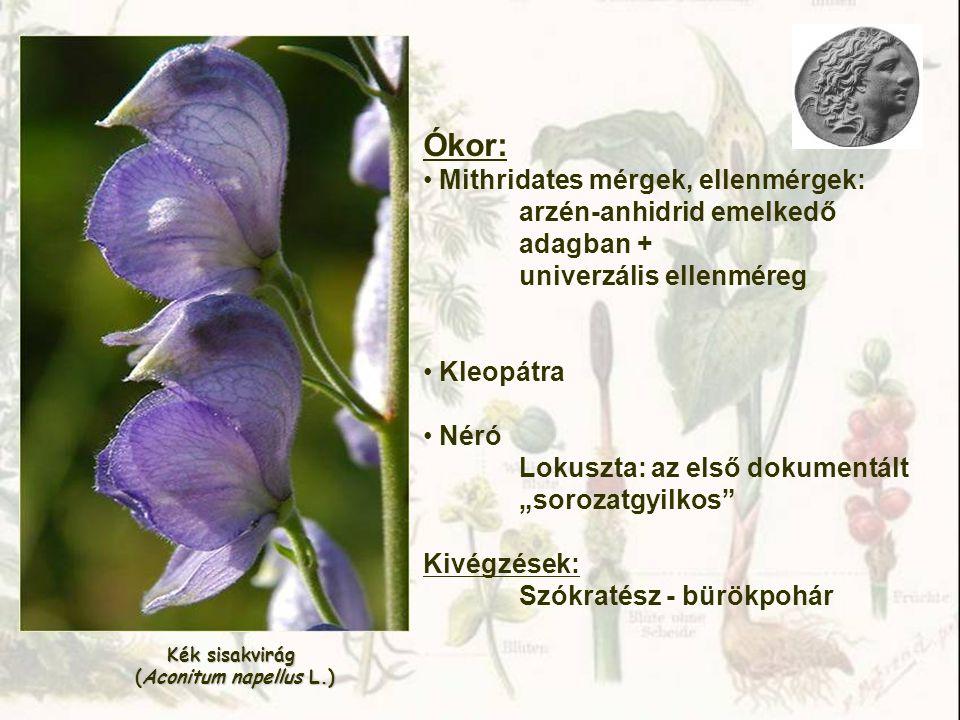 Növények csoportosítása biológiai hatás alapján 1.Mérgező növények: nem használhatók gyógyászati célra, csak káros hatás (kb.