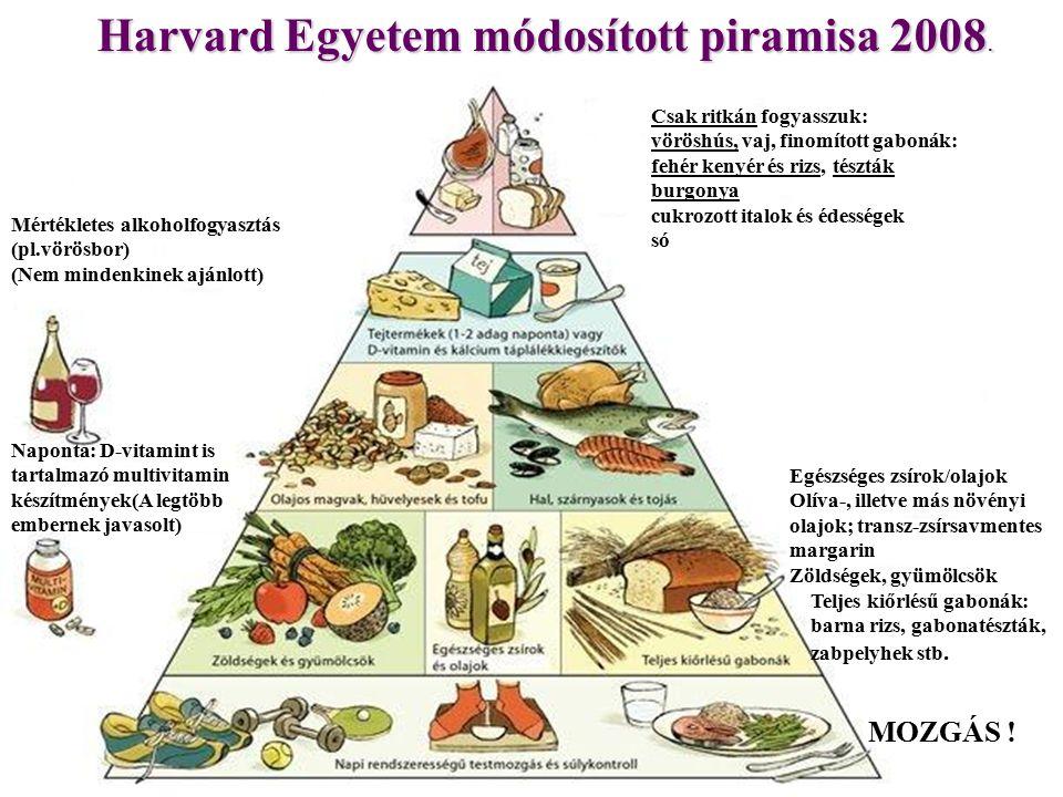Harvard Egyetem módosított piramisa 2008.