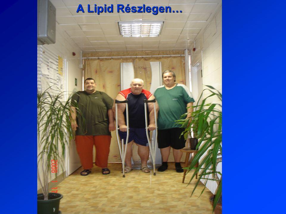 A Lipid Részlegen…