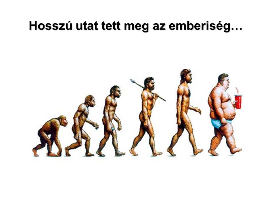 Túlsúly-elhízás gyakorisága és változása USA :1990: 56% 2000: 64% Elhízás (BMI>30) : Gyermekkorban (6-19 év között): 1980: 5% 2000: 15% Magyarország: 1970: 14% 1994: 23% 2000: 31% 15% Gyerekkori táplálkozási és egyéb szokásaik meghatározzák felnőttkori egészségét