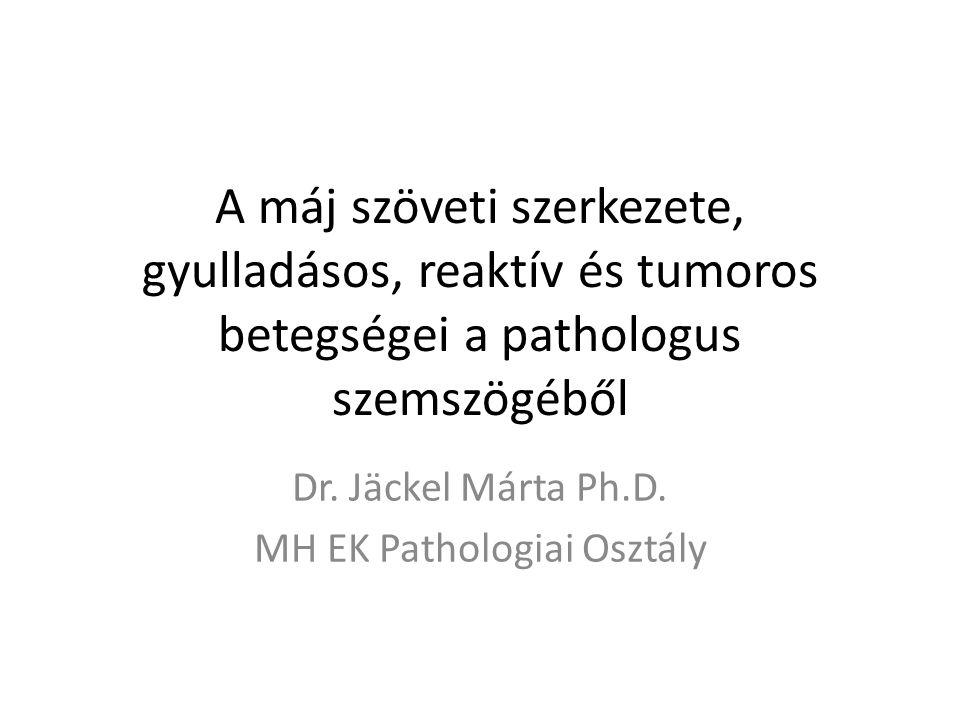 Májsejtkárosodás morfológiai megnyilvánulásai ElváltozásLeggyakoribb ok AdaptívGyógyszer, vegyszer Degeneráció – Ballonnem specifikus – Habosepeelfolyási zavar – Steatosisalkohol, gyógyszer, vegyszer, tárolási betegségek, diabetes, sepsis, terhesség – Hialinalkohol, PBC, Wilson kór Intracelluláris tárolás – Vashemochromatosis, hemosiderosis – RézWilson kór, PBC, krónikus cholestasis – Porfirinporfiriák – Glikogénglikogenosis Necrosis – Koagulációskeringési zavar, hepatitis, fertőzés – Litikustoxikus hatás – Zonálistoxikus hatás – Hídszerűkrónikus hepatitis – Masszívfulmináns hepatitis, paracetamol, gombamérgezés Apoptosis (Councilmann test)vírushepatitis 22.