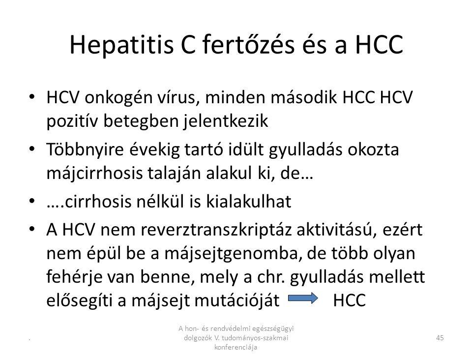 .45 Hepatitis C fertőzés és a HCC HCV onkogén vírus, minden második HCC HCV pozitív betegben jelentkezik Többnyire évekig tartó idült gyulladás okozta májcirrhosis talaján alakul ki, de… ….cirrhosis nélkül is kialakulhat A HCV nem reverztranszkriptáz aktivitású, ezért nem épül be a májsejtgenomba, de több olyan fehérje van benne, mely a chr.