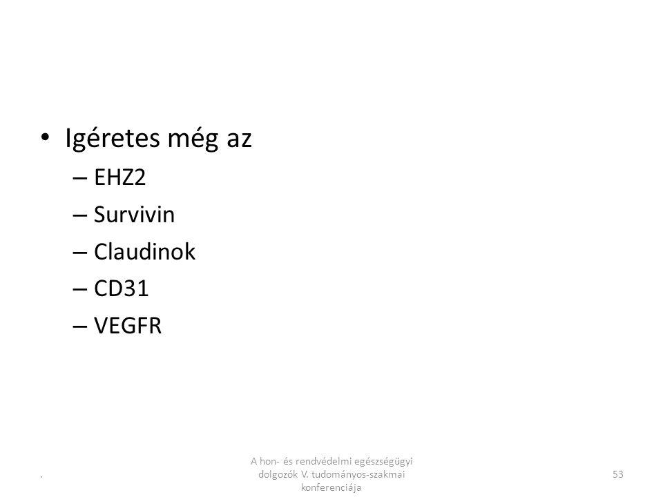 .53 Igéretes még az – EHZ2 – Survivin – Claudinok – CD31 – VEGFR A hon- és rendvédelmi egészségügyi dolgozók V.