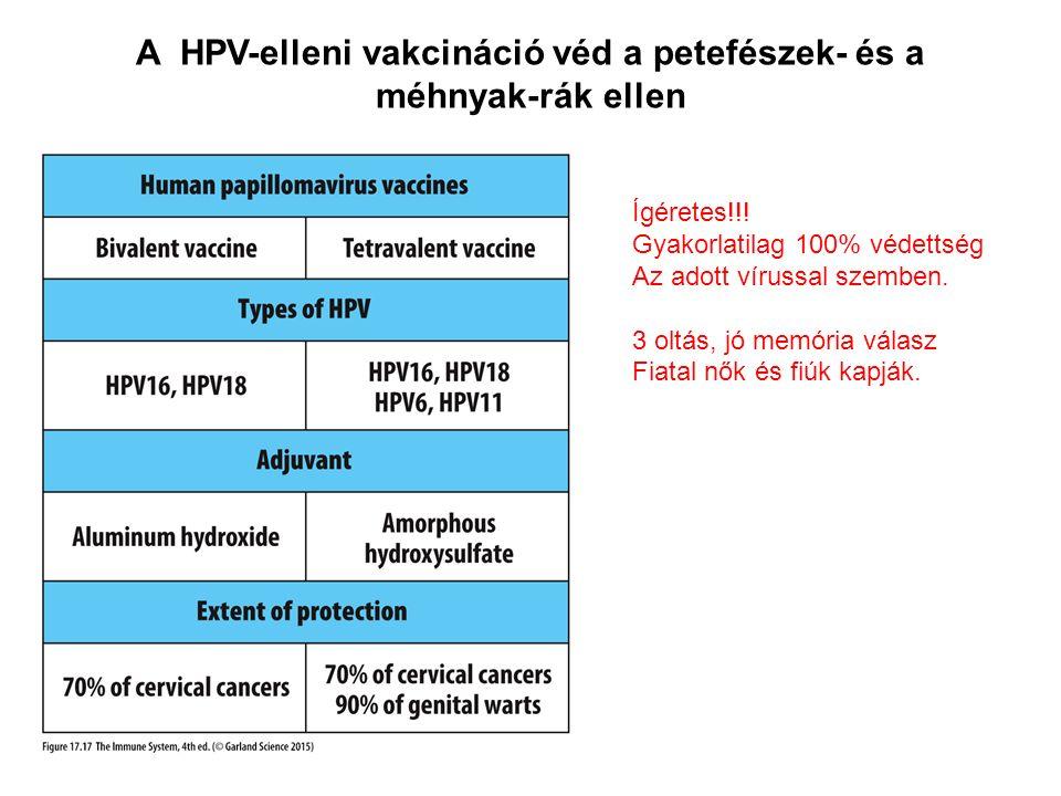A HPV-elleni vakcináció véd a petefészek- és a méhnyak-rák ellen Ígéretes!!.